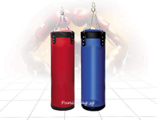 Hanging Punching Bag